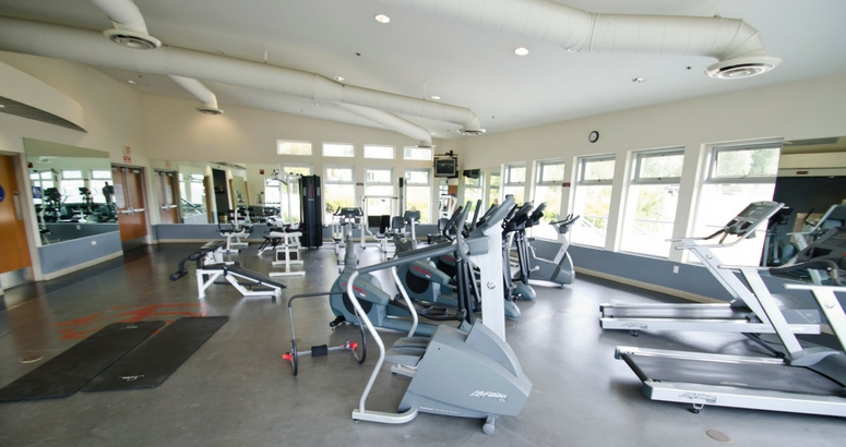 Image of AJU Gym with machines and wide windows