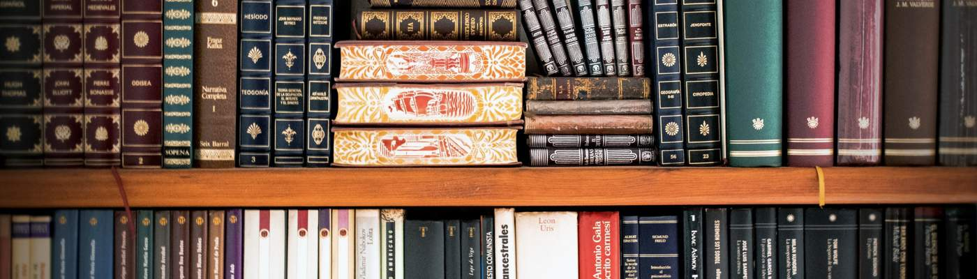 Photograph of library books on a shelf