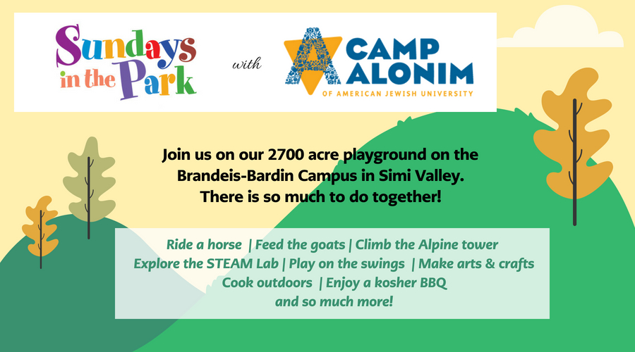 Image of Sundays in the Park with Camp Alonim