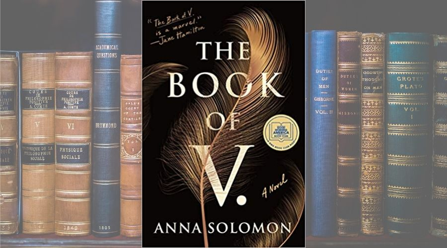 book of v book cover